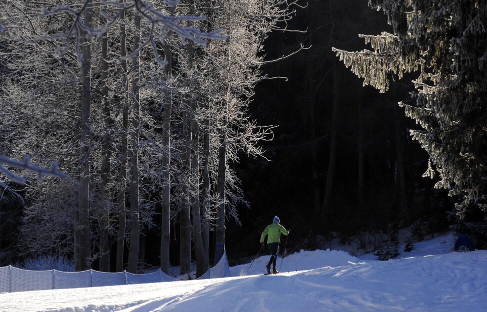 15/12/2018 - Piste da sci di fondo 2018/2019 in Val di Fiemme