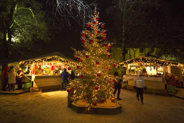 01/12/2018 - Magnifico Mercatino di Natale a Cavalese